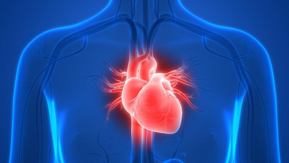 Heart Failure Foundation Course